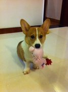 Posing with new toy