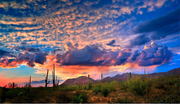 January Conference on Dreams in Tucson, AZ