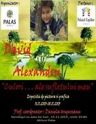 """""""Culori ale... sufletului meu"""" - expoziție de pictură și grafică DAVID ALEXANDRU"""
