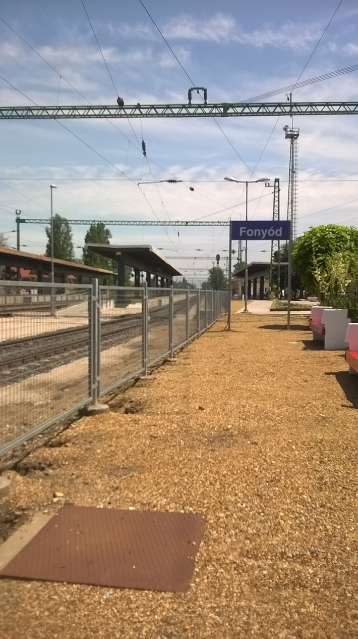 Balaton-Pávián túra 2019