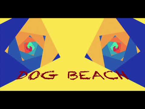 The Le$ Dillinger   Dog Beach(Acoustic)