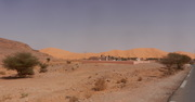 Taghit 2014-536