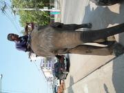 Un éléphant dans les rues de Chaiyaphum...!