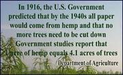 All paper from hemp