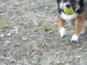 running with ball.
