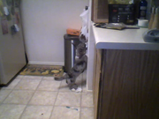 Caught in the act! : O