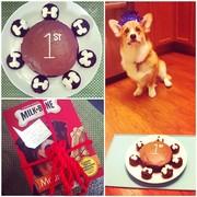 Casey's 1st birthday