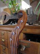 Ed's banjo, headstock