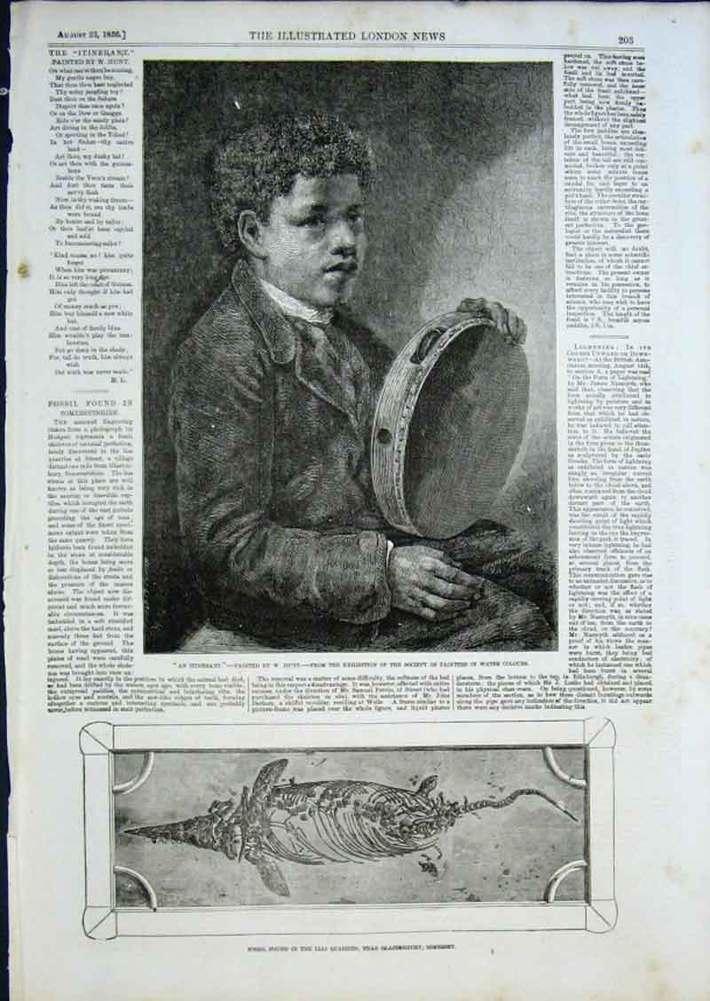Tambo boy, ILN, 1856