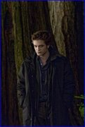 "I LOVE..""The Twilight Saga!!"""