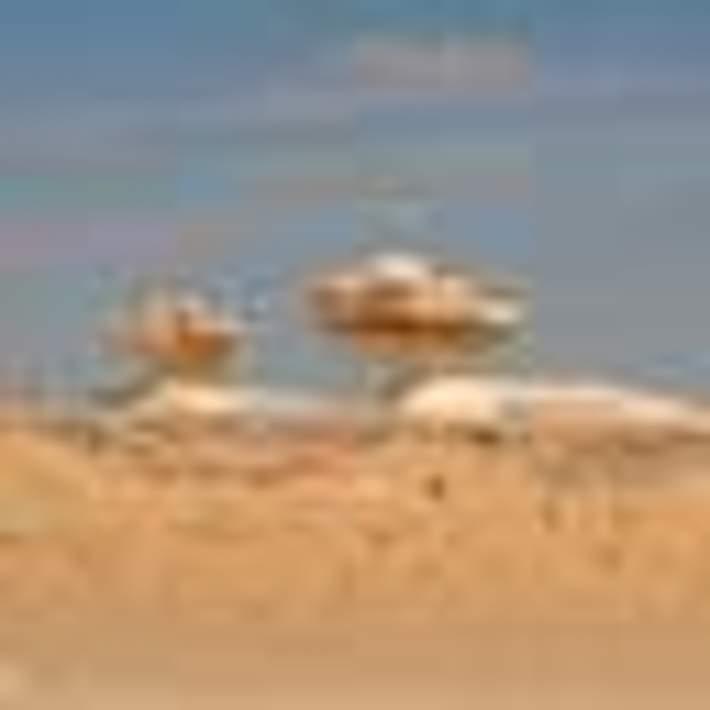 White_Desert_