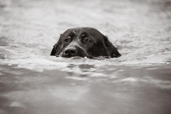 Kiah swimming