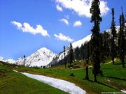 pakistan's beauty