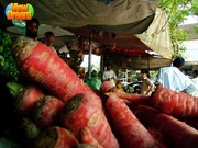 carrots shop in Lahore
