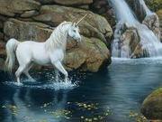 unicorn in water
