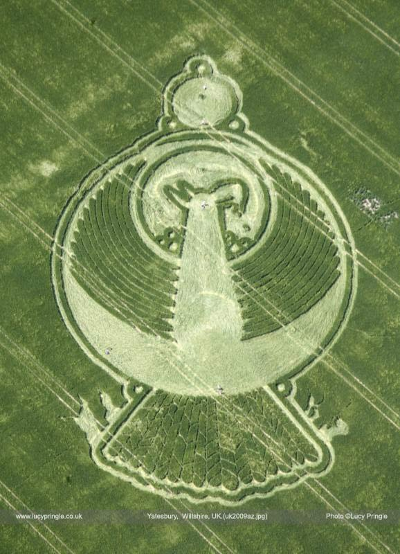 pheonix crop circle