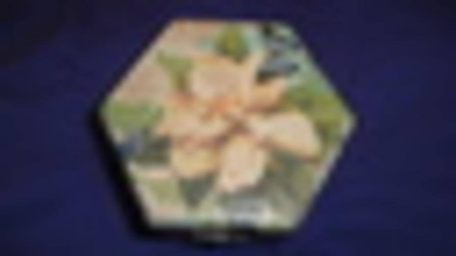 DSC05889