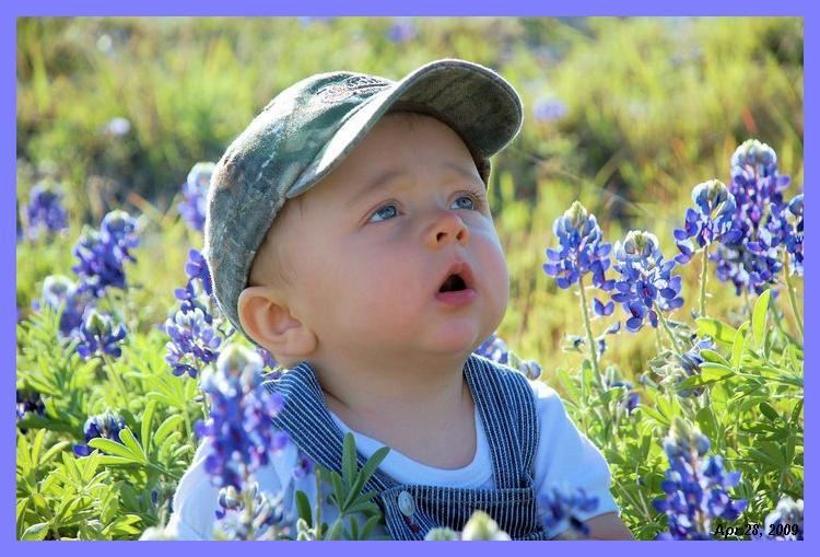 Walt in bluebonnets.2