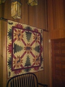 Complete quilts and quilt tops