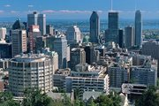 Montreal Corgis