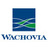 Wachovia Short Sales