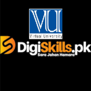 DigiSkills: Training Program
