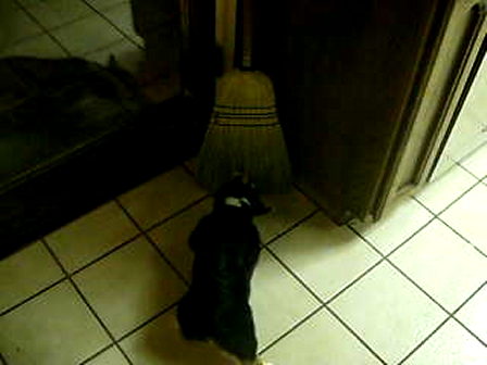 why won't this broom play, IM READY