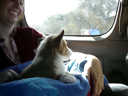 Pooka's Ride Home