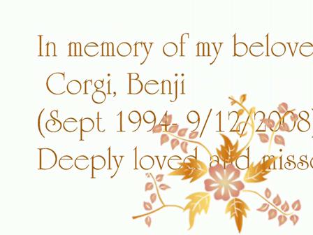 benji in loving memory