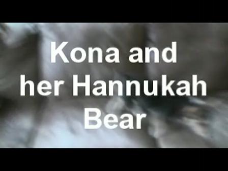 Hannukah bear