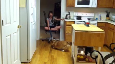 Chair rides