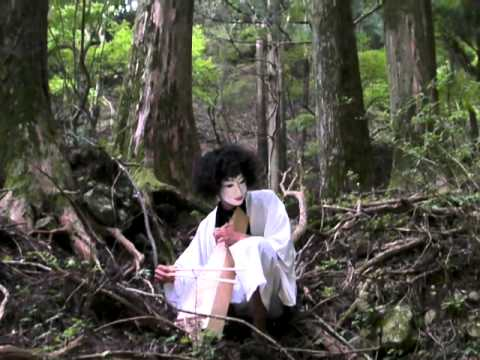 Takeshi-forest Psaltery