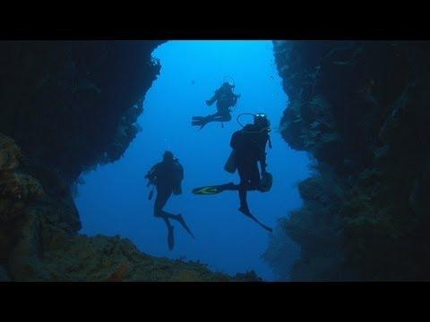 Dakuwaqa's Garden - Underwater footage from Fiji & Tonga