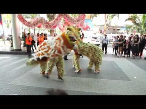 Chinese Dragons Tigers Shuffling for New Years