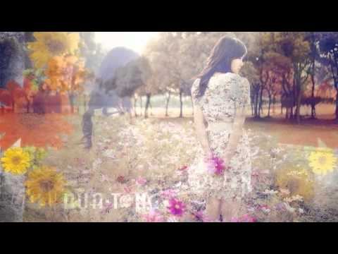 Irene Huang - Forget the Memories - Lyrics Translation Pinyin