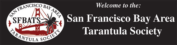San Francisco Bay Area Tarantula Society