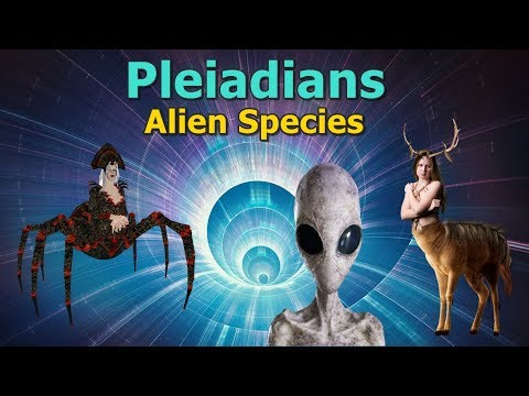 Pleiadian - Reptilians, Human hybrids, Fairy tales, Spiders