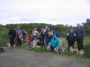 Marymoor off-leash Dog Park (WA)