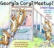November Georgia Corgi Meetup!