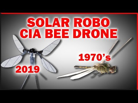 Solar Robo Bees And The CIA Dragonfly Drone