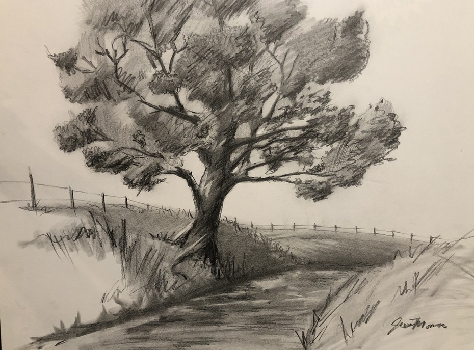 pencil drawing. Tree