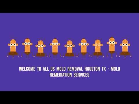 All US Mold Remediation Services in Houston, TX