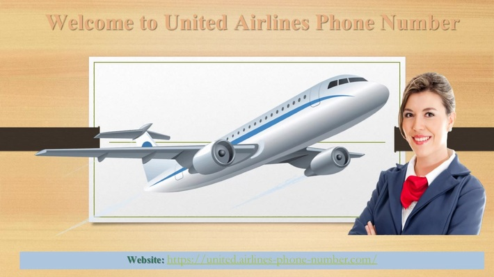 United Airlines Phone Number  Dial Toll Free Number