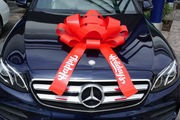 Red Happy Holidays Car Bow
