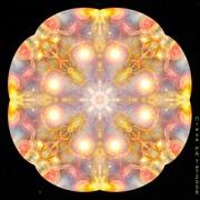 Mandala-Ptiza Ra