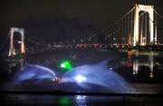 Япония Голограмма дельфинов