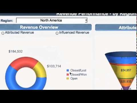 Eloqua Marketing Dashboard and Campaign ROI Tracking