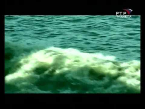 Призраки со дна океана НЛО под Водой