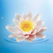семинар «Чистота семи Дхат»