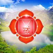 семинар «Йога Самосохранения – 4»